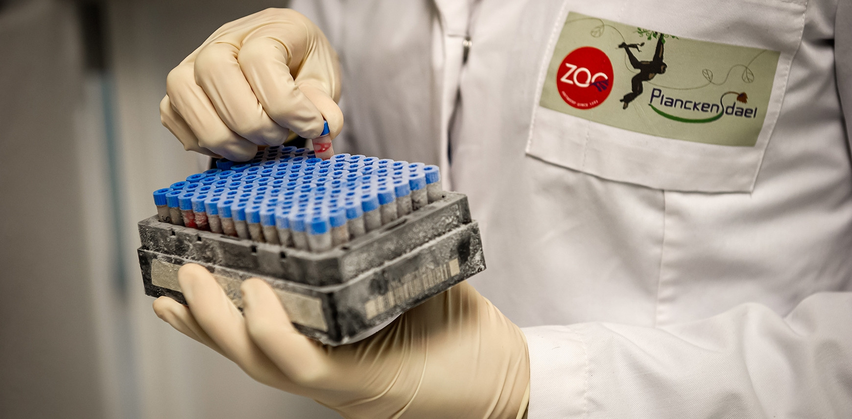Biobank als Back-up